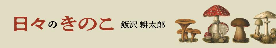 日々のきのこ / 飯沢耕太郎